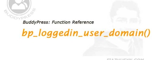 bp_loggedin_user_domain